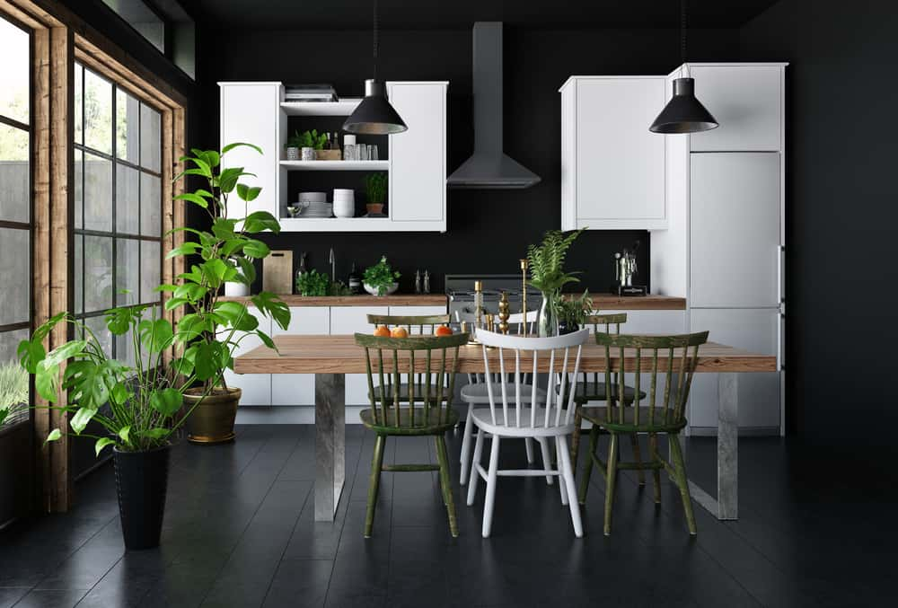 Black Floor and Walls monochrome kitchen ideas