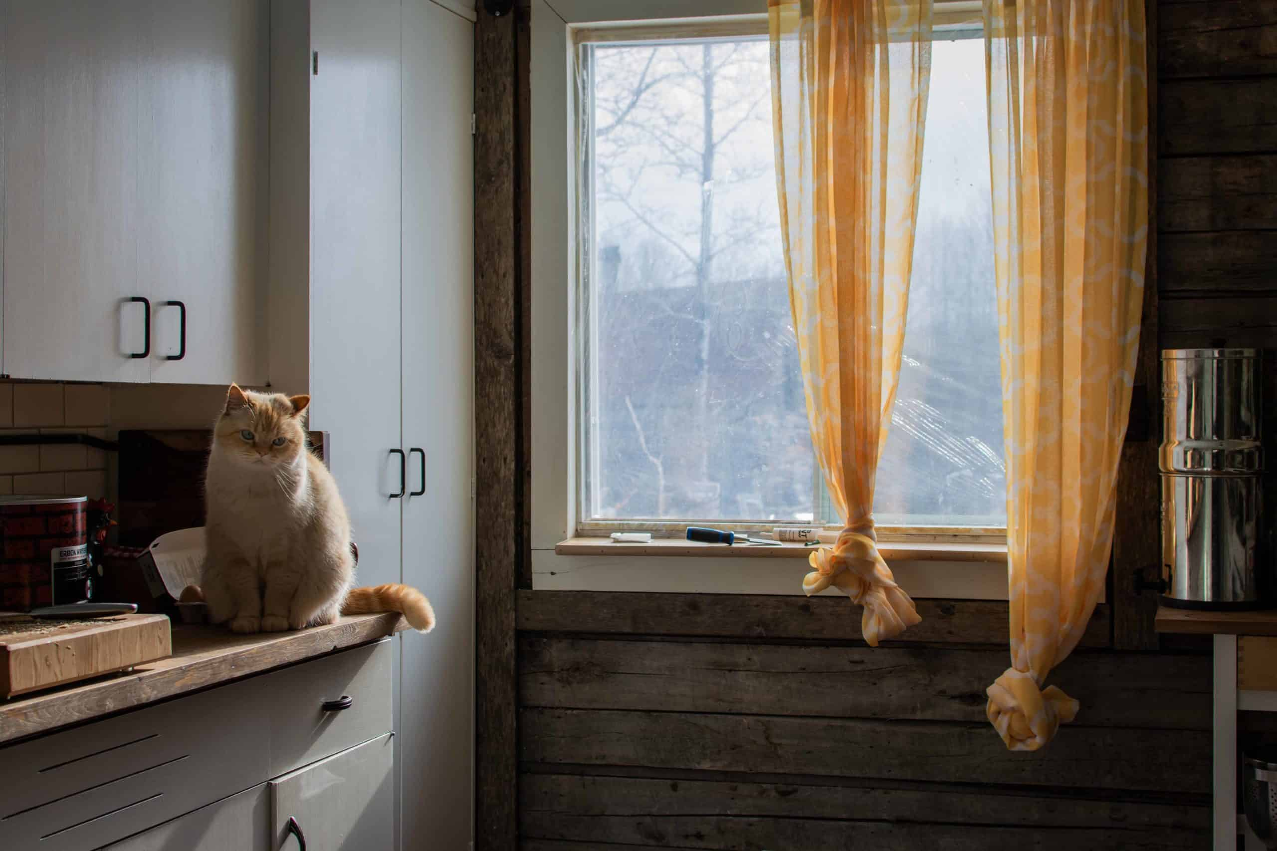 Chiffon Curtains kitchen window treatment ideas
