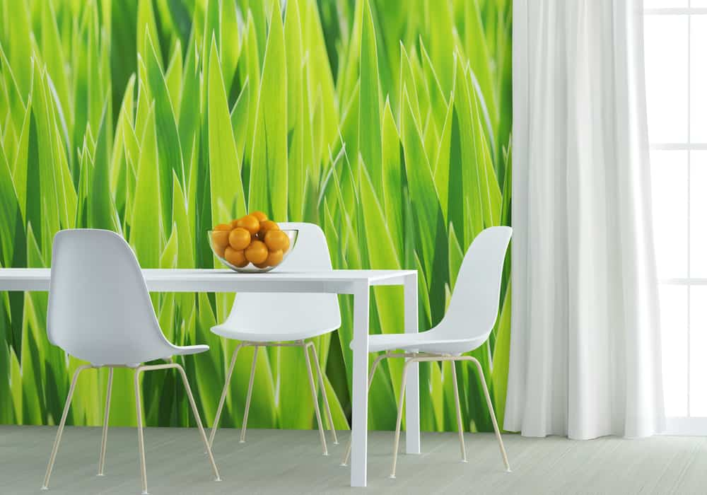 Green, Green Grass kitchen wallpaper ideas