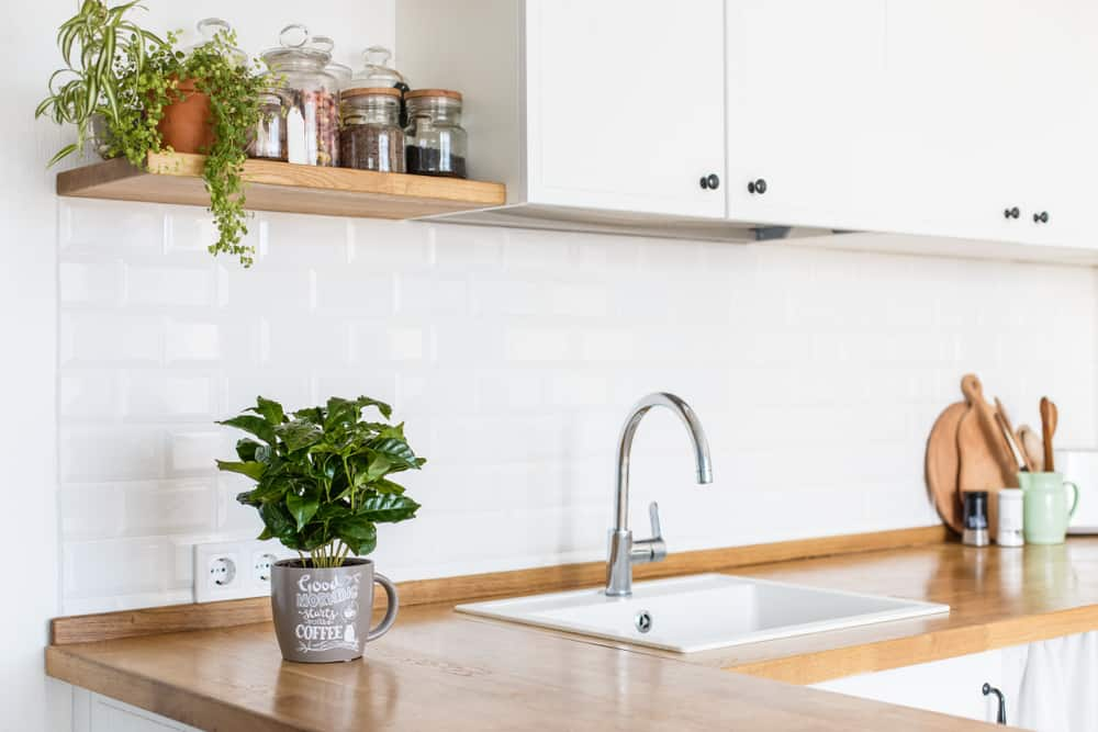 Natural Shelving with Plants kitchen coffee bar ideas