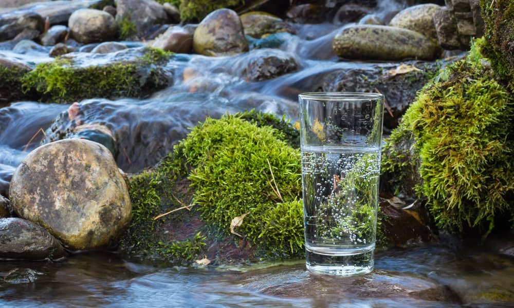 purified vs spring water